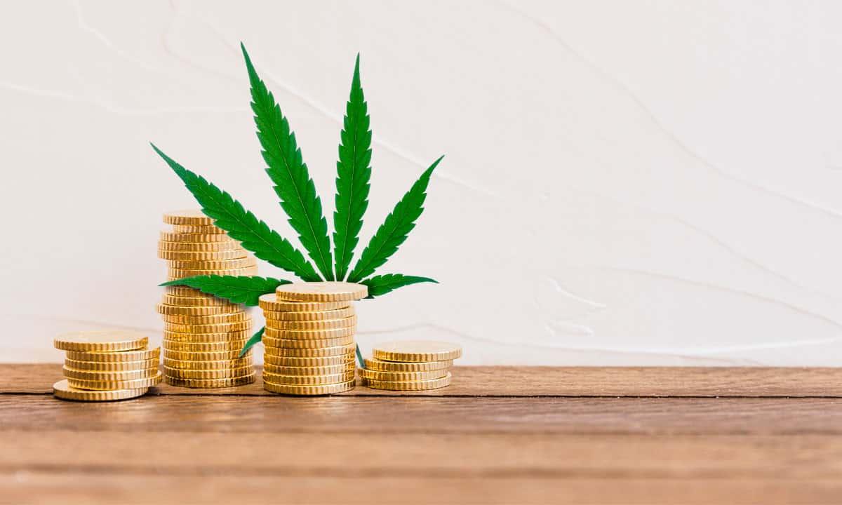 En noviembre, la Cofepris anunció la autorización de venta de 38 productos con cannabis en México. (Foto: Freepik)