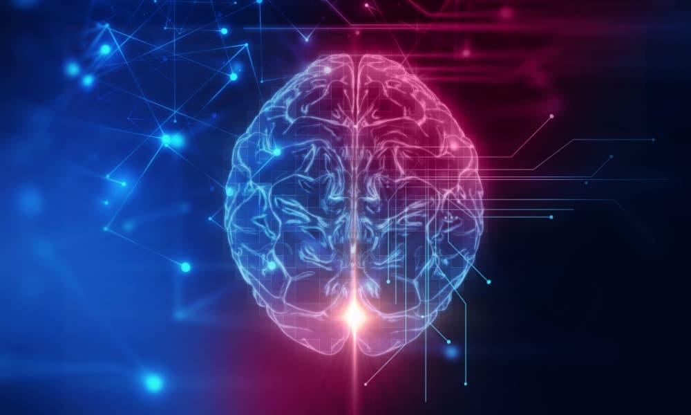 cerebro, brain