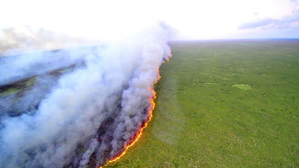 brasil, amazonas, amazonias, incendio forestal