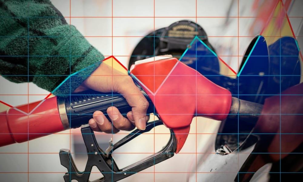 reportes sector petrolero