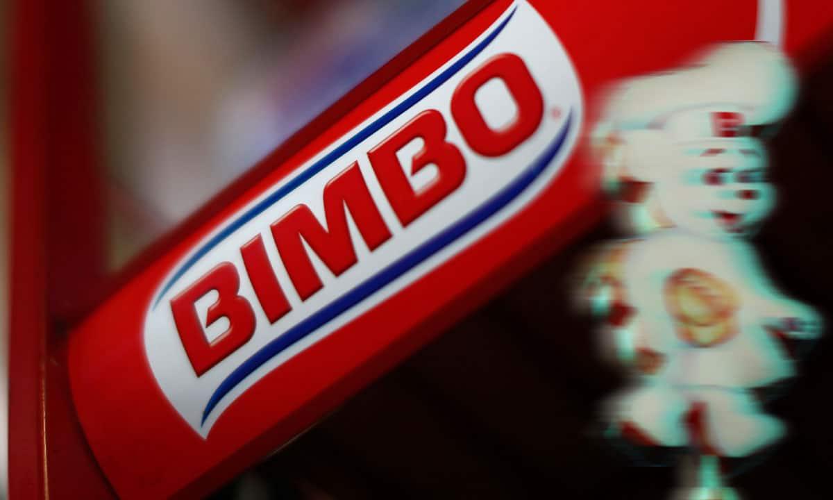 Bimbo reporte